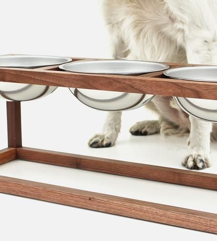 Get Rid Of The Stray Food Bowls Underfoot With This Elegant
