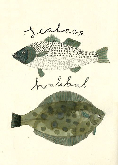Some Cornish fish.