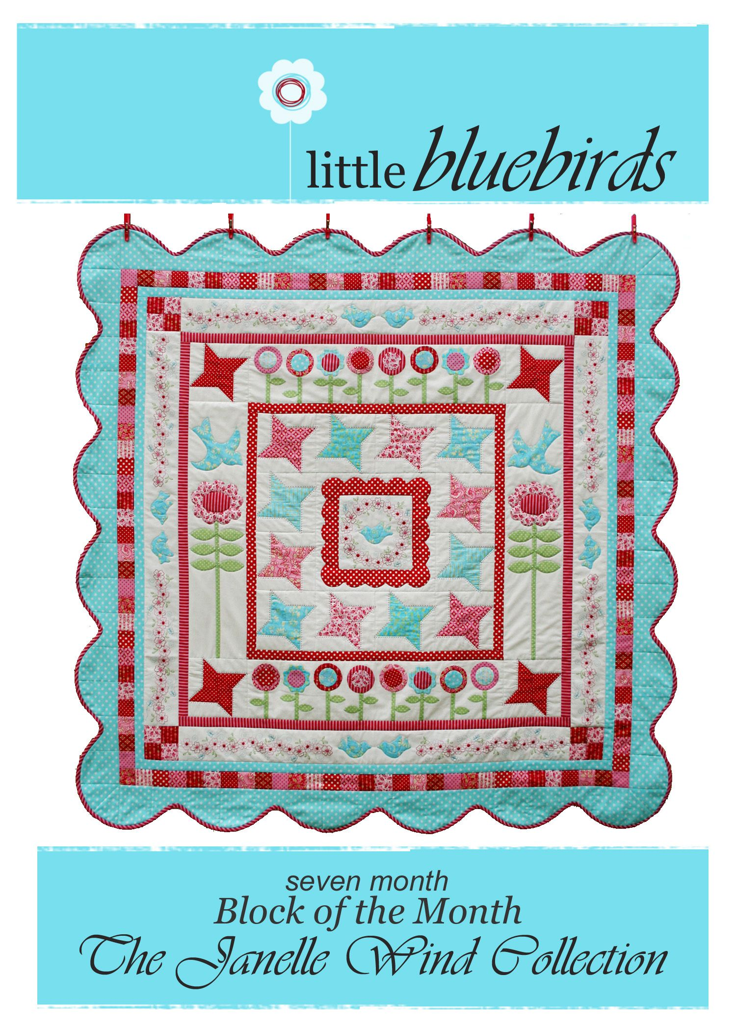 Google Image Result for http://s3.media.squarespace.com/production/510399/5927218/quilt_fabric_delights/janelleFLYERphotoshopCOPY.jpg