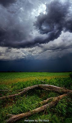 Fallen by Phil~Koch, via Flickr Check out the cloud formation.  Wow.  Van Gogh clouds!