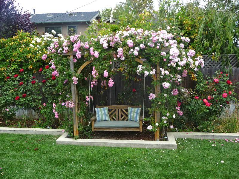 Pretty Arbor And Swing Love The Roses Garden Arbor Garden