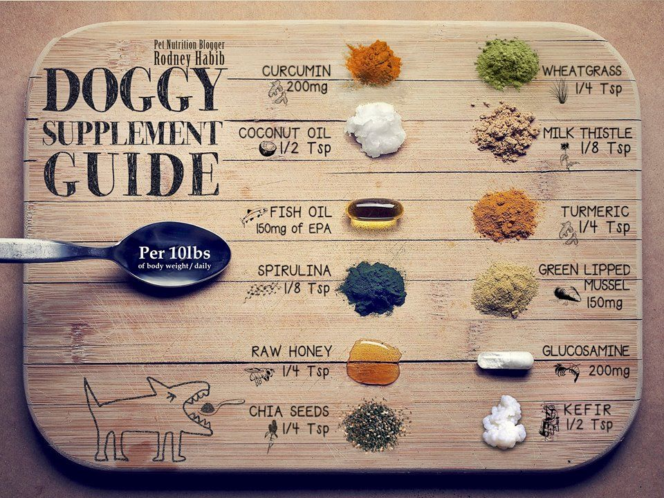 Doggie supplement guide raw dog food recipes food animals