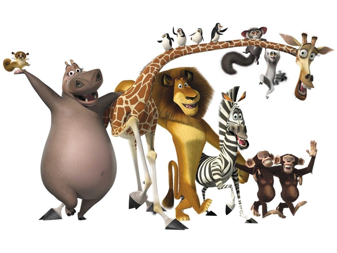 Madagascar Wallpapers Muurschildering Madagascar Jongenskamer