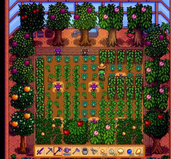 Greenhouse Stardew Valley Stardew Valley Tips Stardew Valley Farms