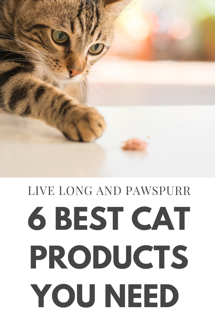 6 Cat Products You Need To Be Buying From Amazon In 2020 Live Long And Pawspurr In 2020 Cat Care Tips Cat Training Cool Cats