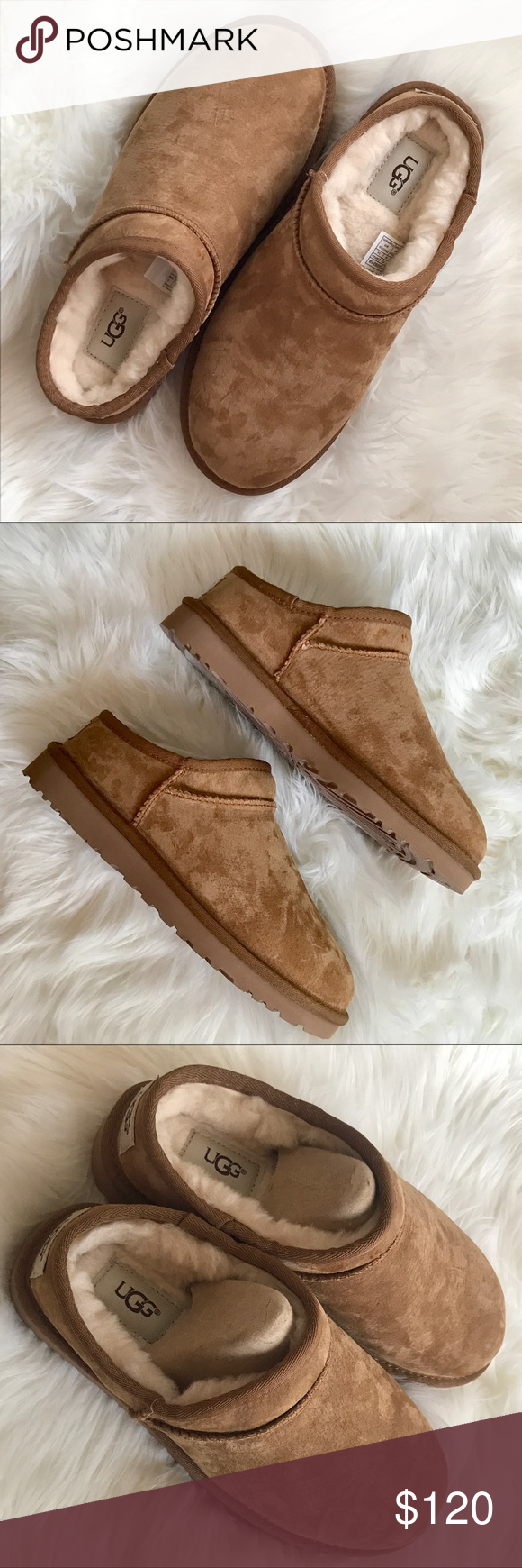 0176e888f48 BRAND NEW Ugg Classic Chestnut Slipper Brand new, authentic, with ...