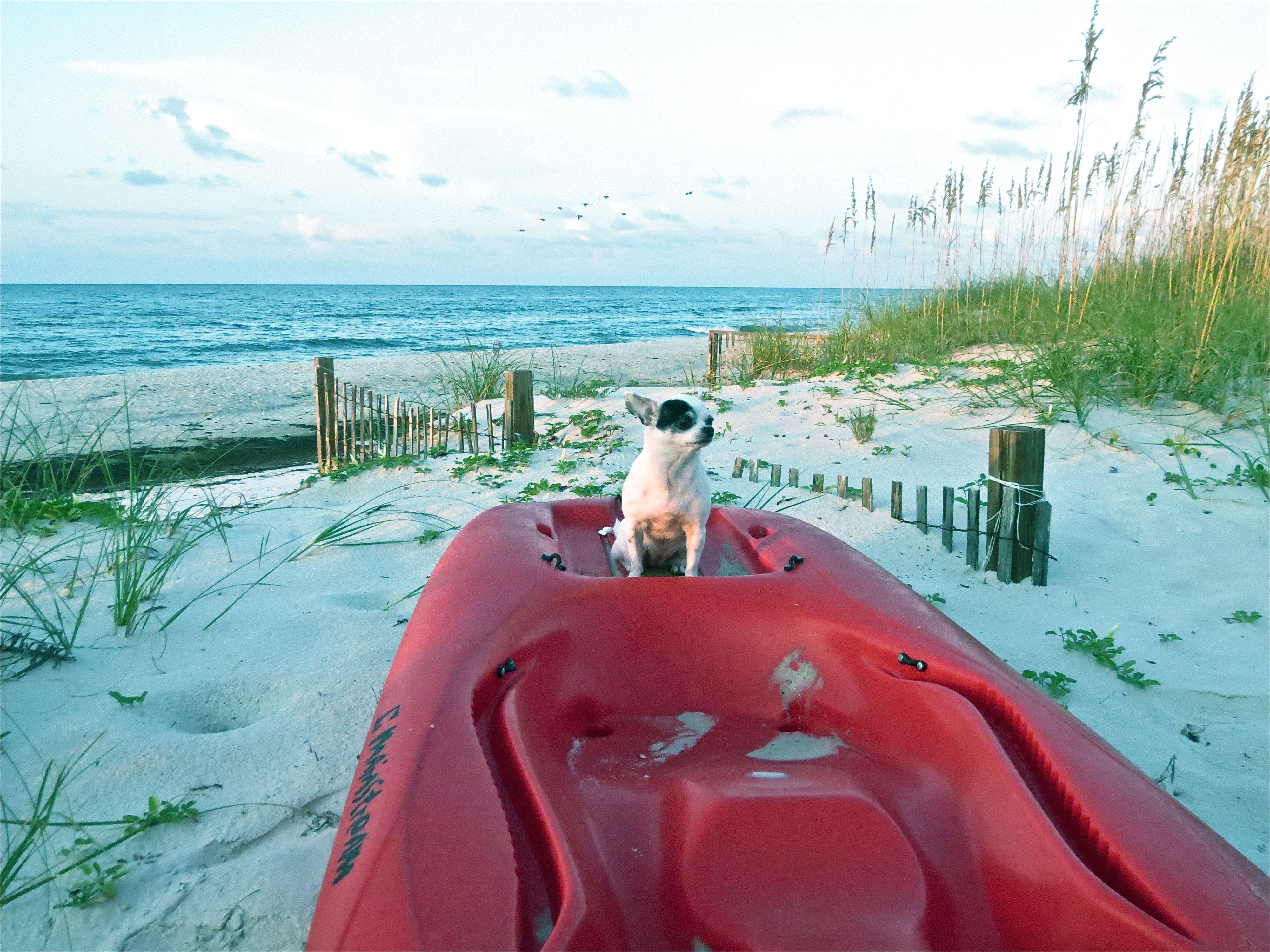 Ethel on the kayak sunrise point st island fl