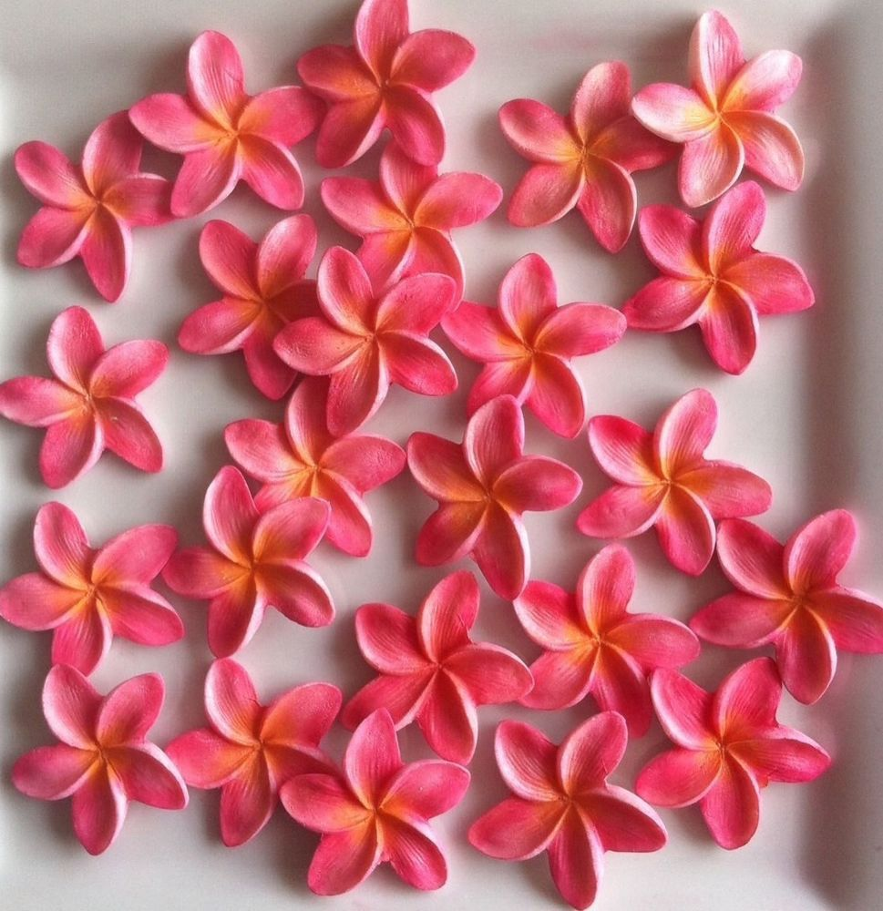 Shimmer Full Colour Edible Frangipani Flower Decoration X30 Cake ...