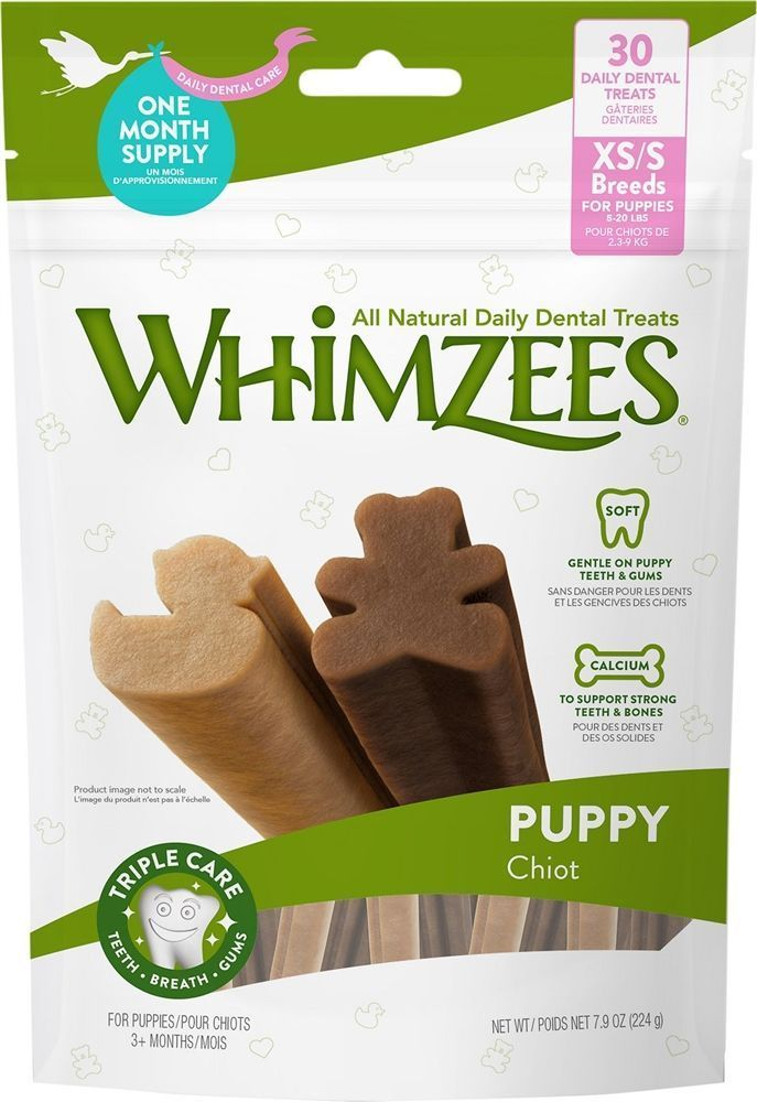 ;  Keeping puppys dental health in check with WHIMZEES Puppy Dental Dog ...