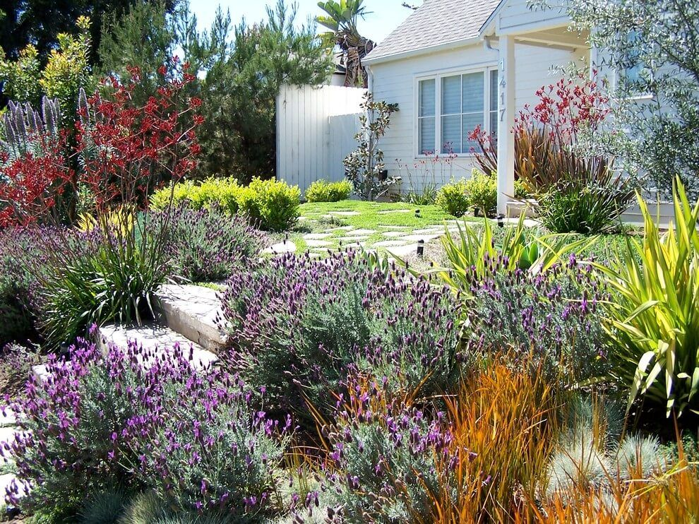 34 Simple But Effective Front Yard Landscaping Ideas On A Budget Yard Landscaping Low Water Gardening Traditional Landscape