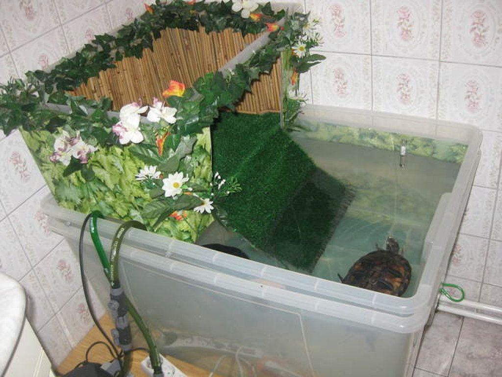 Peceras para tortugas tortugas turtle habitat turtle - Estanques para tortugas de agua ...