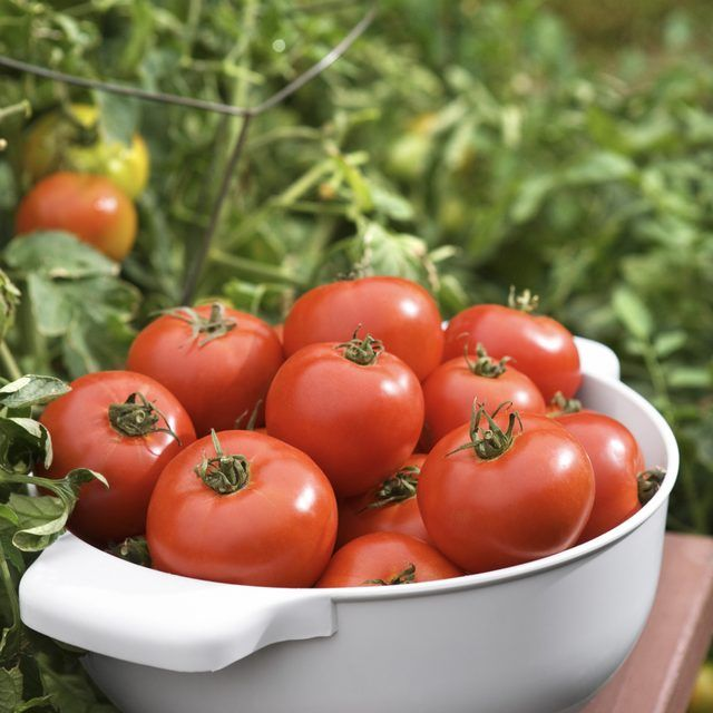 Tomatoes, The 11 Best Vegetables for Grilling