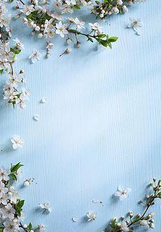 Cyan Flower Background