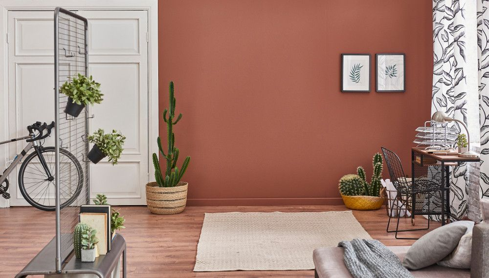 Zoom Sur La Couleur Terracotta In 2020 Accent Walls In Living