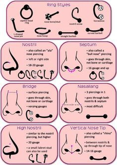 septum piercing pain chart: Nose piercing pain chart nose piercing faqs painfulpleasures inc