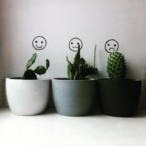 Image result for plant aesthetic tumblr