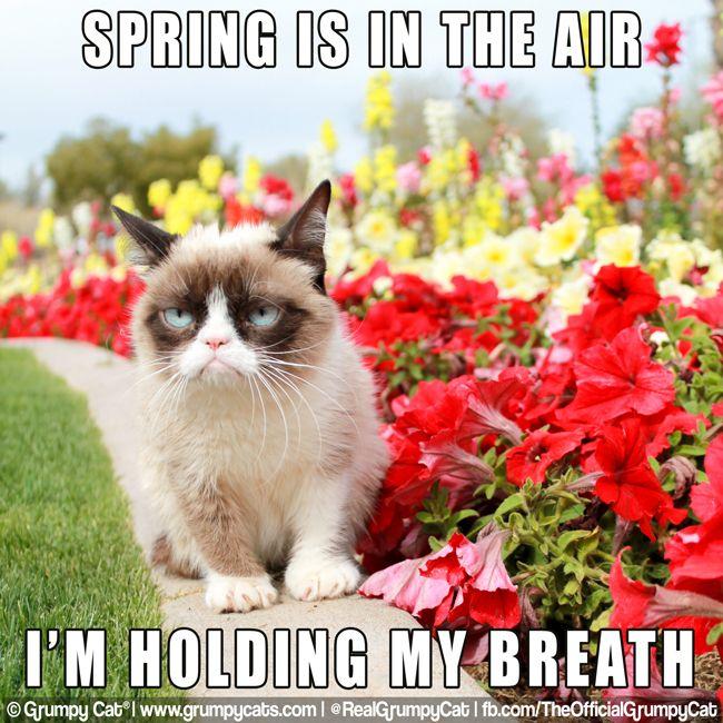 Bransoletka bangle ściegiem herringbone, bo jeden pierwiosnek wiosny nie czyni