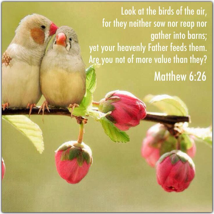 Image result for when god provides in the bible god as provider image result for when god provides in the bible sciox Choice Image