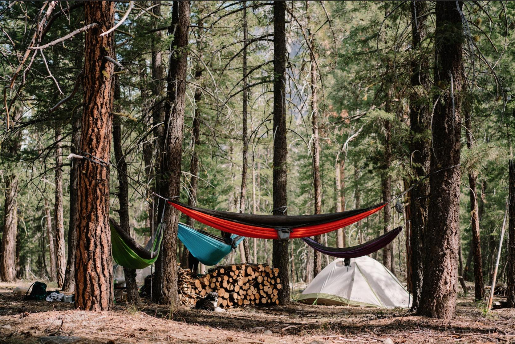 Roo camping hammock camping places and hiking