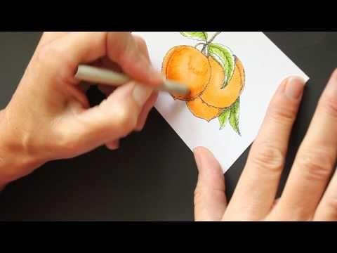 copic markers and prisma color pencils