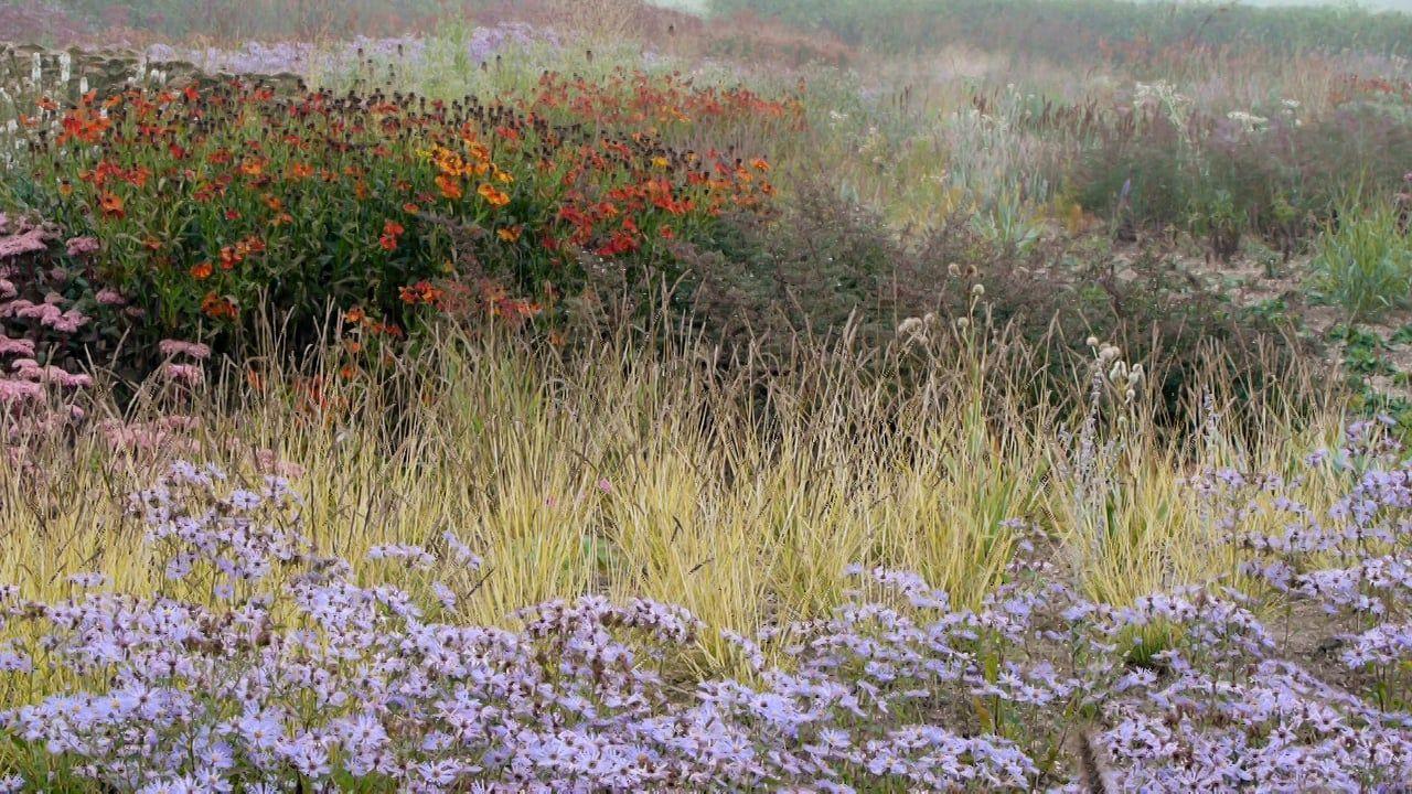 Piet Oudolf Documentary Teaser Piet Buchart Gardens Fall Winter Spring Summer