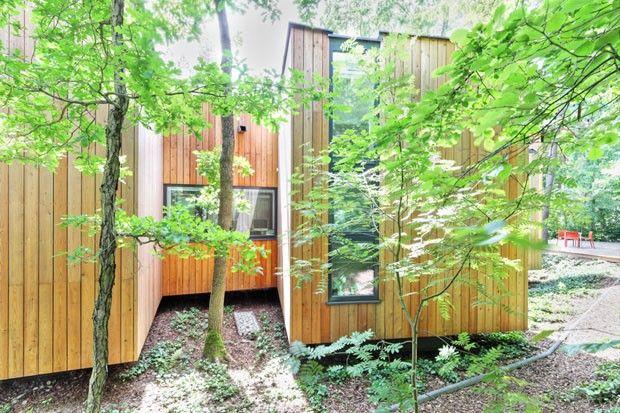 Árvores ditam a planta da casa. Projeto polonês se adapta para não agredir floresta