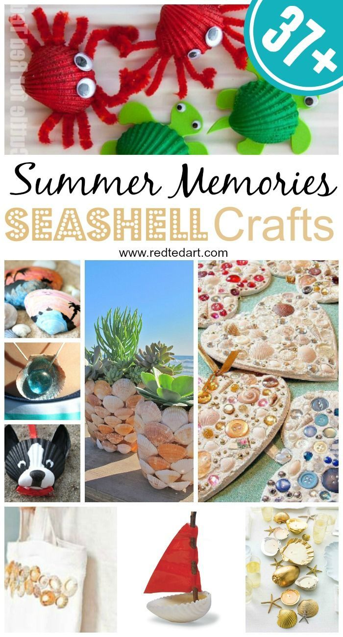 37 Ideas To Use All 4 Bahtroom Border Tile Types: 37+ Sea Shell Craft Ideas