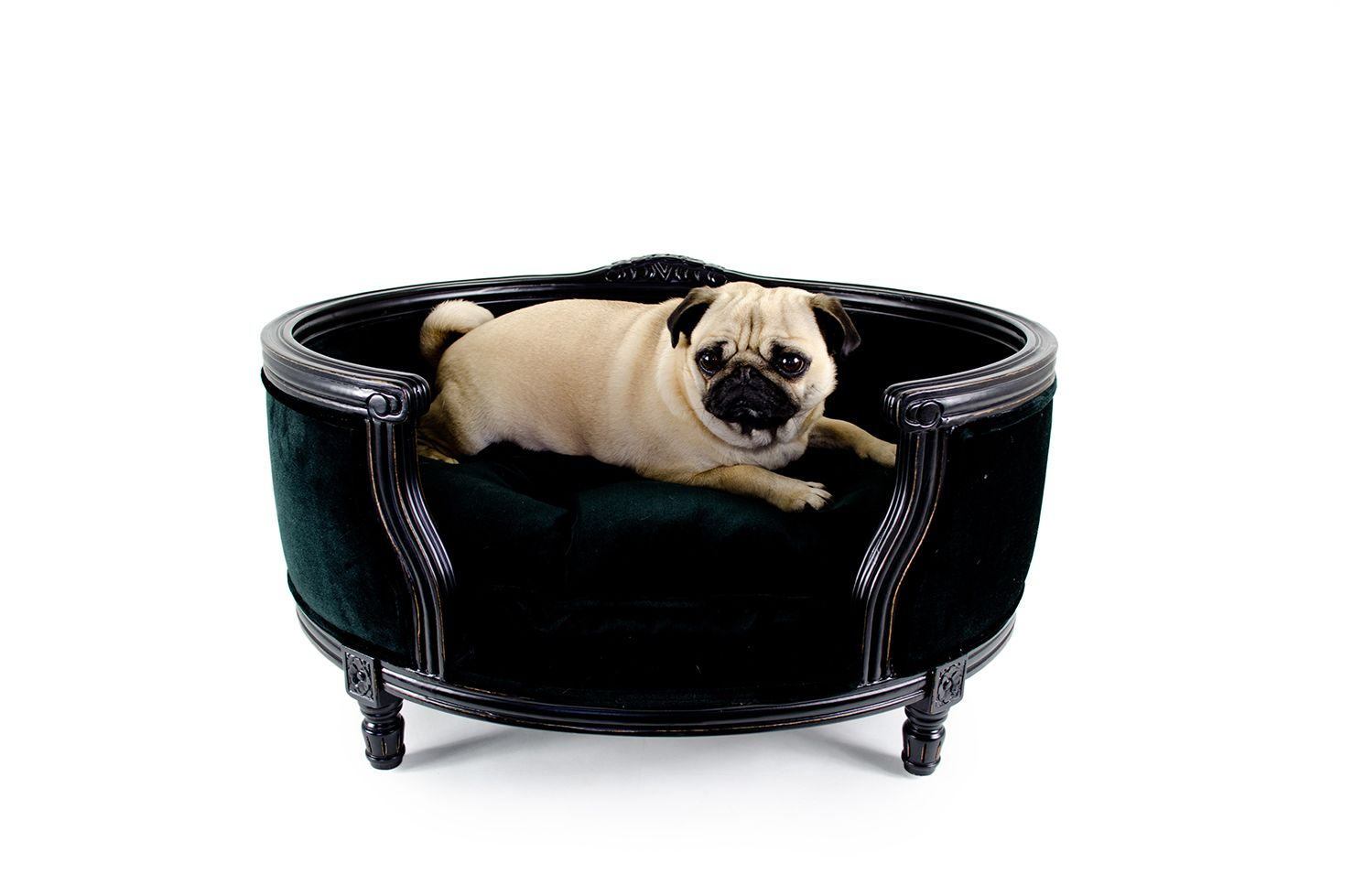 Luxury dog bed - George - Black Velvet - Lord Lou