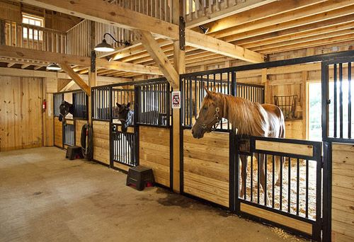 Amazing Horse Stalls We Are Currently Running A Barn Of