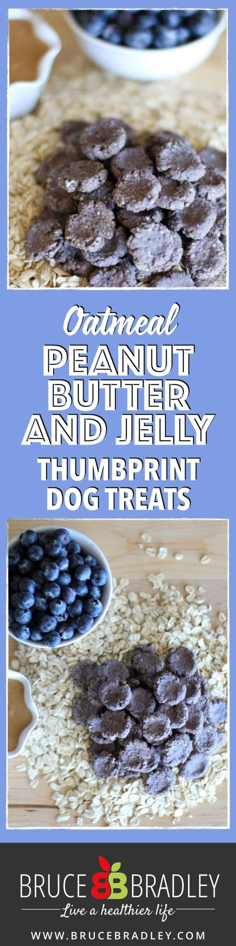 Homemade Peanut Butter Dog Treats with Blueberries ...
