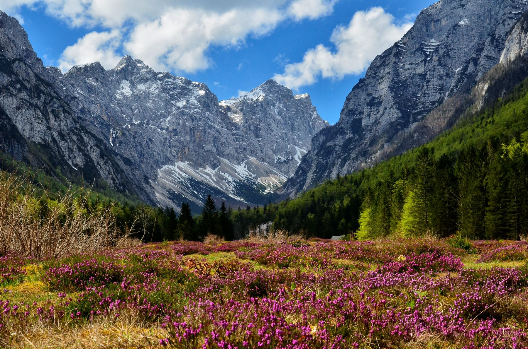 krma-alpine-valley.jpg (1800×1192)