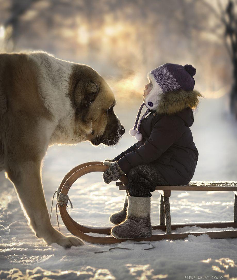 35PHOTO - Elena Shumilova - ..Напоследок о зиме..