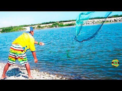 gran pesca de lisas con atarraya en rio