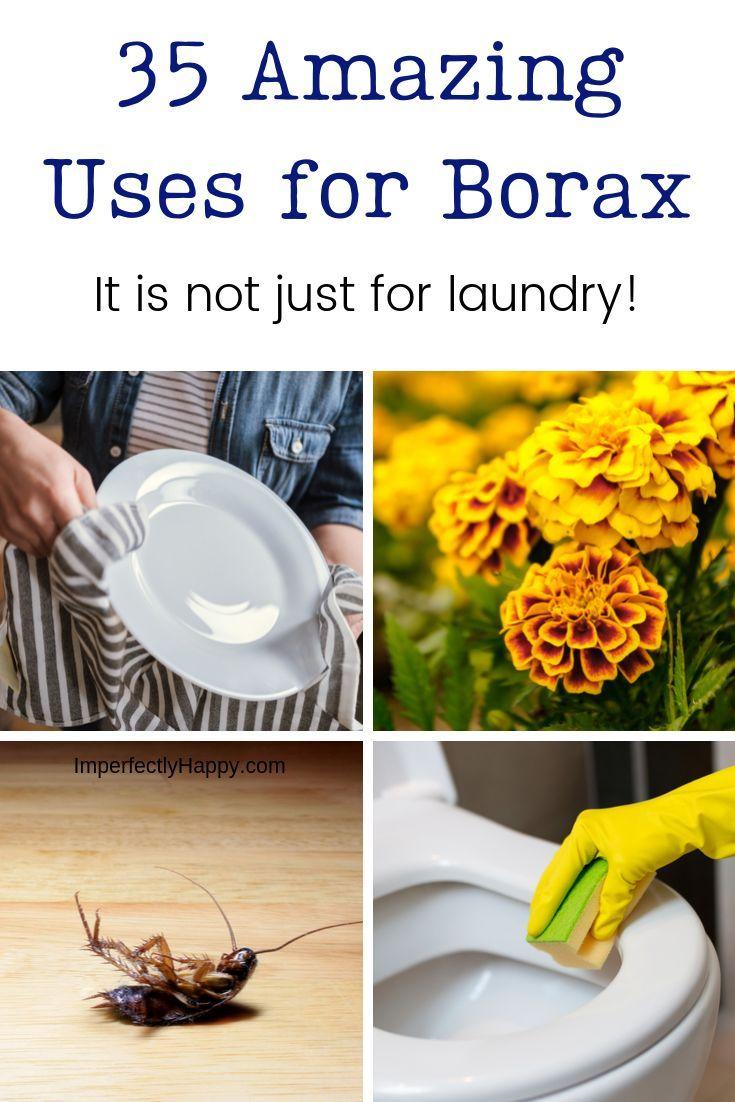 35 Amazing Uses for Borax Borax uses, Pest control