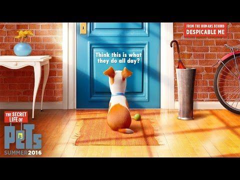 """#Filmes: Diretor de Meu Malvado Favorito mostra o que seus pets fazem quando você não está ↪ Por @curiosocia. No maior estilo Toy Story, diretor de """"Meu Malvado Favorito"""" mostra em nova produção o que seus animais fazem quando você não está! Veja só! http://www.curiosocia.com/2015/06/diretor-de-meu-malvado-favorito-mostra.html"""