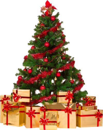 Christmas Tree Png Download Png Image With Transparent Background Png Image Christm Christmas Tree With Gifts Real Christmas Tree Christmas Tree Decorations