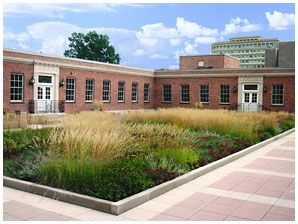 Accessory Products Green Roof System Garden Landscape Design Green Roof