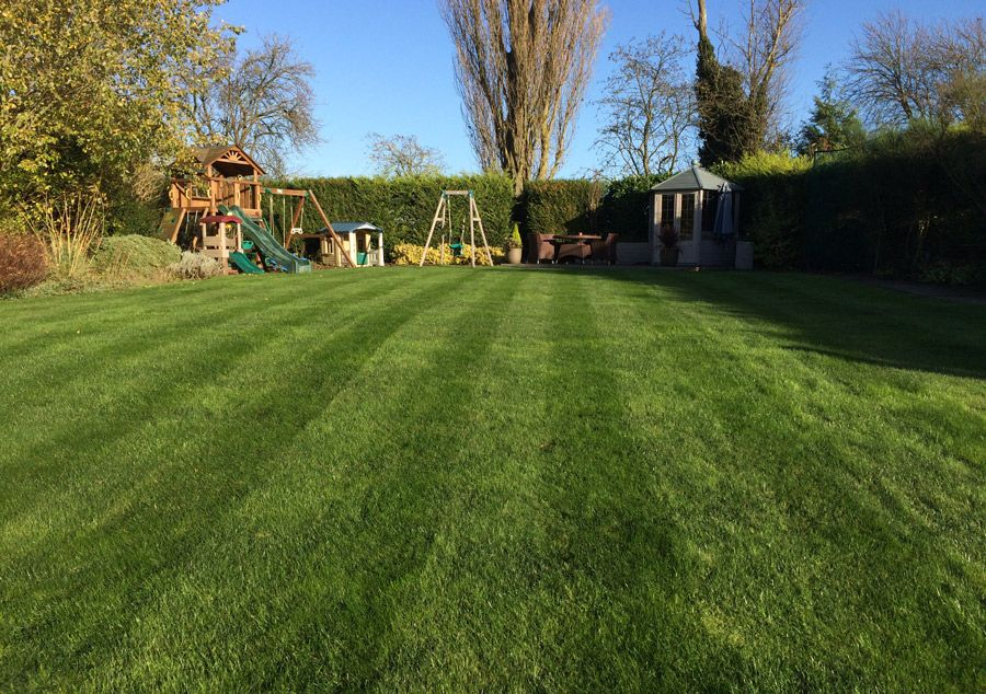 Professional Lawncare Services TruGreen South