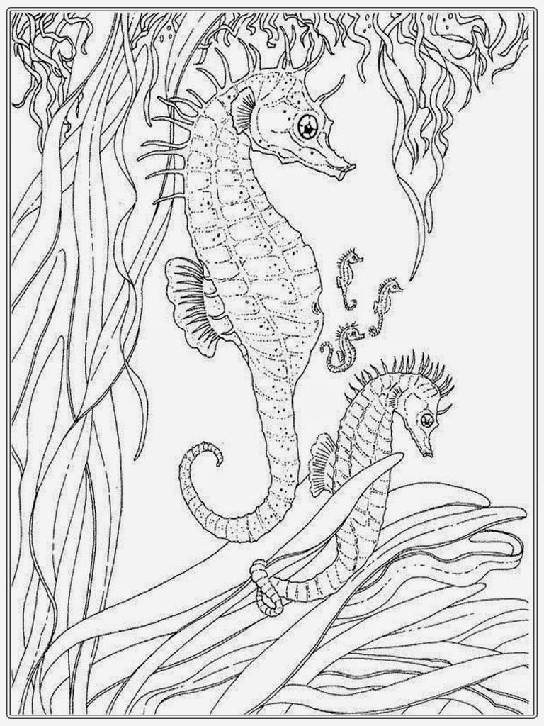 Realistic Seahorse Coloring Pages For Adult Ocean Coloring Pages