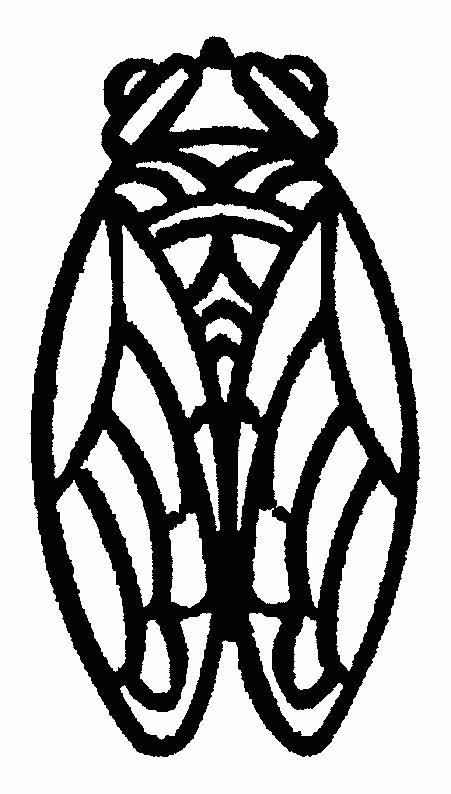 Cigale pattern | Cigale dessin, Art d'insecte, Cigale