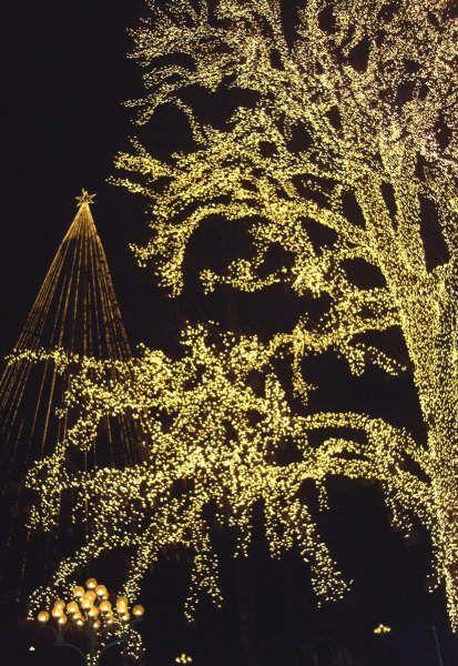 Sweden Lisaberg Christmas Lights Cc Lucysthings Via Wikipedia Christmas Lights Lights Outdoor Lighting