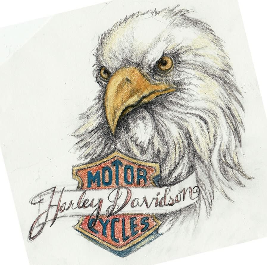 Tatouages Aigles 35 Harley Davidson Pinterest Tatouage