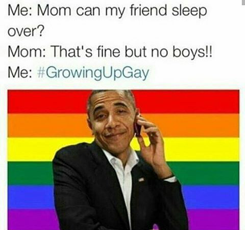 15 Memes That Roast Brands When Pride Month Ends Memes Funny Pictures Funny Memes
