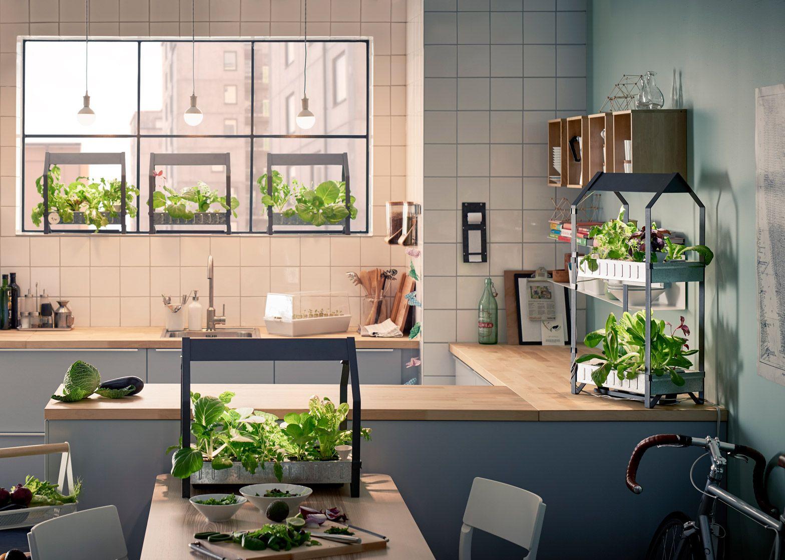 Growco Indoor Garden Supply Ikea moves into indoor gardening with hydroponic kit millennial ikea moves into indoor gardening with hydroponic kit workwithnaturefo