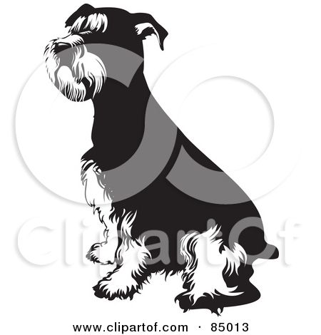 Royalty Free Rf Clipart Of Schnauzers Illustrations Vector White Dog Images Illustration Schnauzer