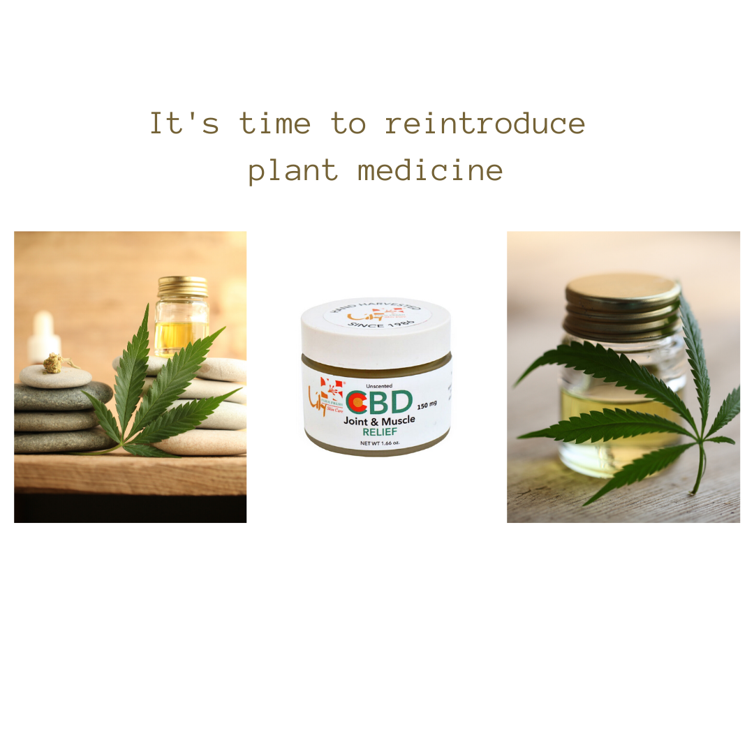 CBD Joint & Muscle Relief 150 mg in 2020 Fresh skin
