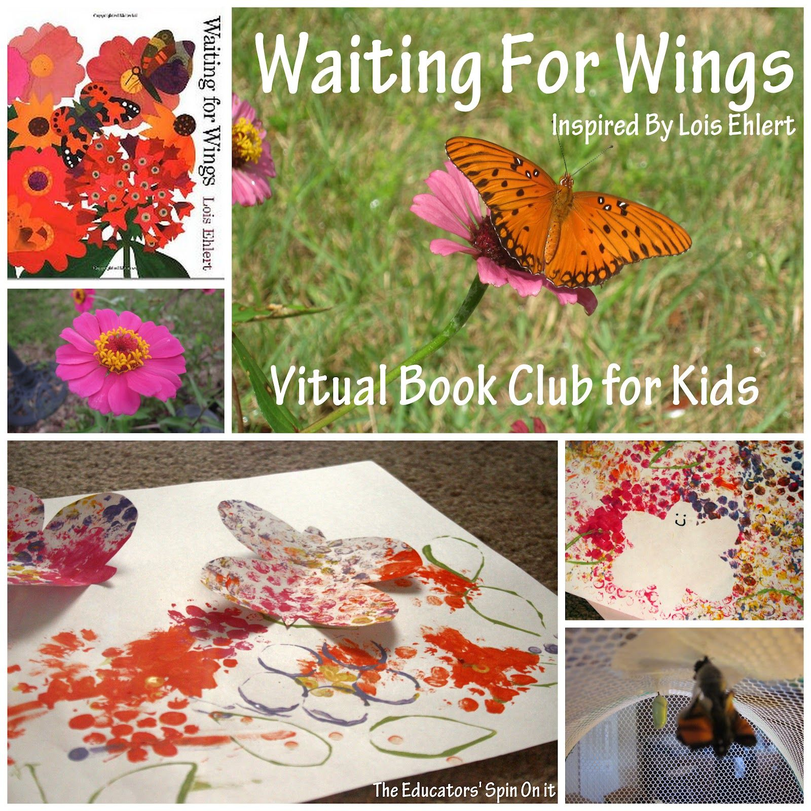 waiting for wings activities includes ideas for observing and