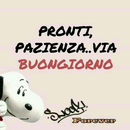Pin by teresa mazza on buongiorno pinterest snoopy for Buongiorno sms divertenti
