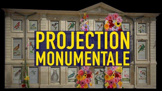 MAPPING VIDÉO : « AU PAYS DE MÉDARD »    Projection vidéo architecturale artistique et éphémère.  À l'occasion de la nuit des Musées qui se tiendra le 10 mai 2017, un collectif d'artistes vidéo proposera une projection architecturale géante sur la façade du Musée Médard à Lunel.  Ce type d'évènement, également appelé Mapping Vidéo, consiste à diffuser un film de 6 minutes, constitué d'une série d'animations graphiques, de tableaux virtuels et de contenus visuels enrichis, provenant des…