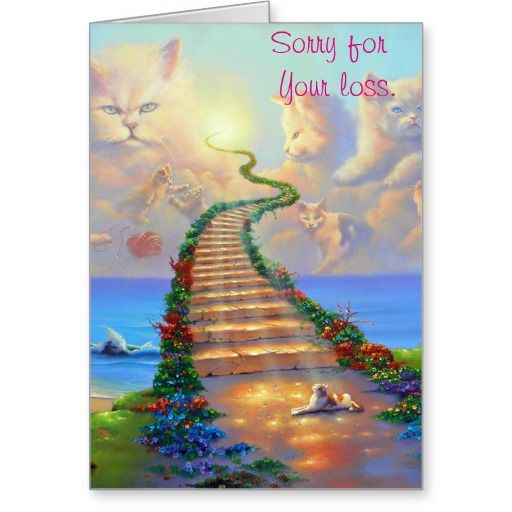 Pet Loss Resources Rainbow Bridge Pet Loss Grief Pet Loss